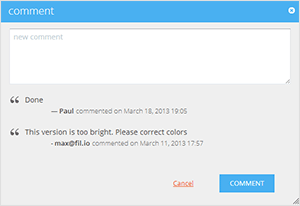 screenshot of commenting interface
